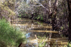 Creek in rural Australia Stock Image