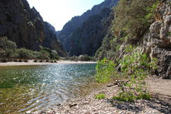 Creek at Sa Calobra Royalty Free Stock Image