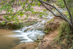 Creek in sandstone canyon near Moab, Utah Stock Images