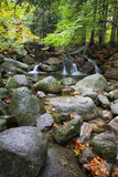 Creek with Small Falls in Mountain Forest Stock Photos
