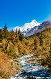 Creek and Snow Mountain. The melted glacier formed a creek in four girls mountain, sichuan, China stock photos