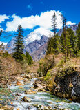 Creek and Snow Mountain. The melted glacier formed a creek in four girls mountain, sichuan, China stock images