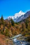 Creek and Snow Mountain Stock Image