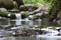 Creek in Sochi Royalty Free Stock Photography