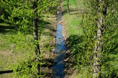 Creek in the spring park, top view stock image