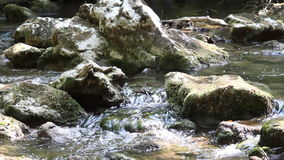 Creek spring scene stock footage