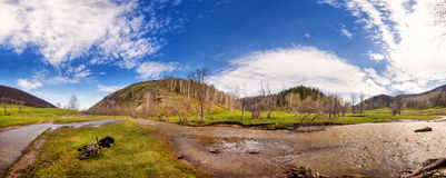 Creek in spring with touring bike Royalty Free Stock Photography