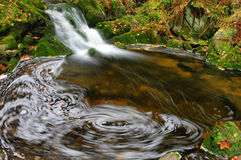 Creek with spume on the pool. With small cascade Stock Photos