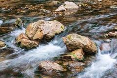 Creek with stone Stock Photos