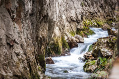 Creek with stone Royalty Free Stock Photography