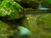 Creek and stones Stock Image