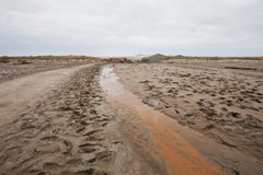 Creek with therapeutic mud near saline Baskunchak Royalty Free Stock Images
