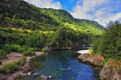 The Creek traverse la forêt photographie stock libre de droits