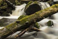 The Creek unter dem ` Eisgraben-` Wasserfall ausführlich Deutschland Stockfoto