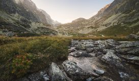 Creek in the Valley under the Mountain Peaks at Sunset Stock Photos