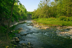Creek View. Creekbed on a beautiful day Stock Image
