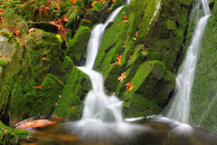 Creek with water-falls. And boulders covered with moss Stock Photos