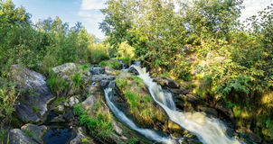 Creek, waterfall, water, river, rocks, cliff, nature, landscape, summer, autumn, day, Bush, forest, grass, reeds, moss, leaves, pu Royalty Free Stock Photography