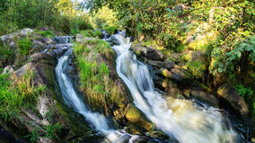 Creek, waterfall, water, river, rocks, cliff, nature, landscape, summer, autumn, day, Bush, forest, grass, reeds, moss, leaves, pu Stock Images
