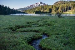 Creek Winds through alpine meadow Royalty Free Stock Photo