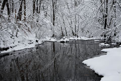 Creek In Winter Stock Image
