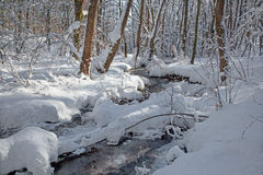 Creek in winter forest in Little Carpathian hills Royalty Free Stock Images