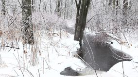 A creek in winter with freezing rain stock video footage