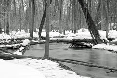Creek in the winter Royalty Free Stock Photo