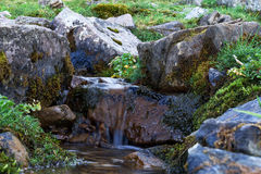Creek in the woods. Cascade falls over rocks Stock Photos