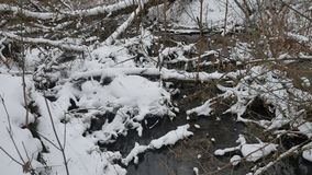 Creek in the woods landscape nature winter flowing water, small river in the snow. Creek in the woods landscape nature winter flowing water, small river in snow stock footage