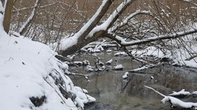 Creek in the woods landscape nature winter flowing water, small river in snow. Creek in woods landscape nature winter flowing water, small river in snow stock footage