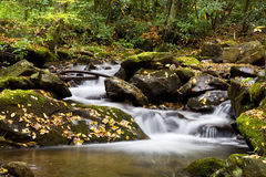 Creek in the Woods. Mountain creek running through the woods in the fall Royalty Free Stock Photos