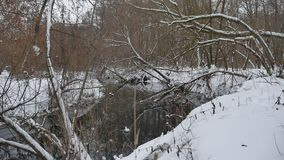 Creek in the woods nature winter flowing landscape water, small river in the snow Stock Photography
