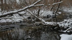 Creek in the woods nature winter landscape flowing water, small river in the snow. Creek in the woods nature winter landscape flowing water, small river in snow stock footage