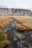 Creek in Yellowstone Stock Image