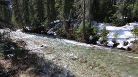 The Creek vídeos de arquivo