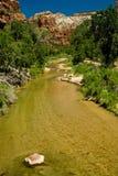 Creek at Zion National Park, Utah Royalty Free Stock Images