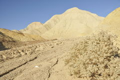 creekbed死亡沙漠谷 库存照片