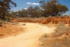creekbed сухое Стоковое Изображение RF
