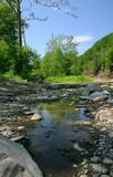 Creekbed. On a beautiful day Royalty Free Stock Image