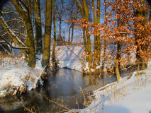 Creeks confluence in winter Stock Image