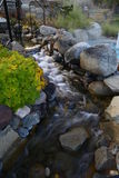CreekSide. Cool creek flowing during the summer months stock image
