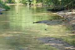Creekside. Creek flowing in shallow water stock image