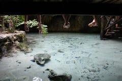 Creekside-Kumpel Stockbilder