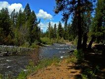 Creekside przespacerowanie Fotografia Royalty Free