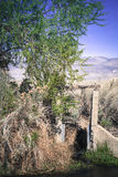 Creekside in Summer. Old water diversion structure near an old ranch on a creek near Bishop California in summer stock image