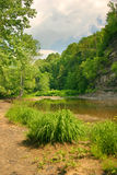 Creekside View. Creekbed on a beautiful day royalty free stock images
