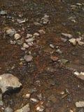 Creekside water rushing. Running water over rocks in Creek royalty free stock photos
