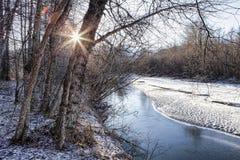 Creekside in Winter. Sunburst through bare trees near an Alaskan creek in winter stock photo