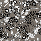 Creeper berries seamless pattern Royalty Free Stock Photography